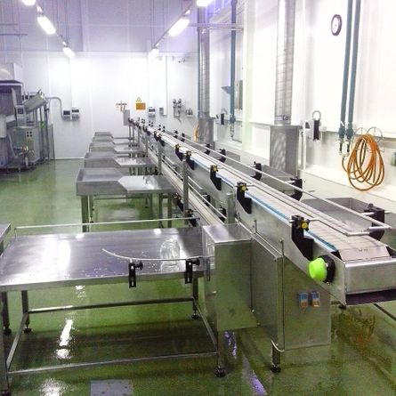 Cucumber packaging line